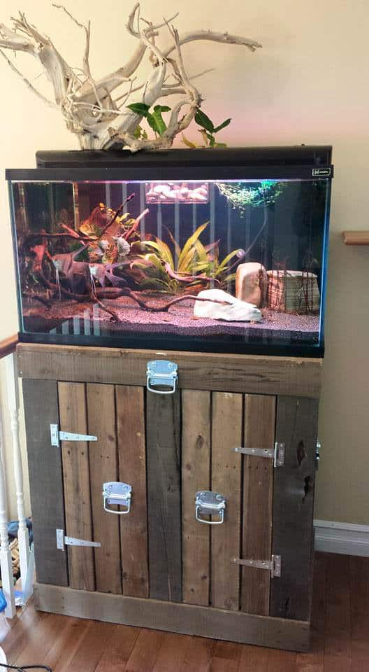 Aquarium Stand From Pallets 1001 Pallets