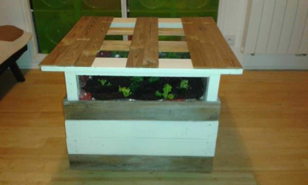 Coffee Table With Integrated Mini Garden Pallet Coffee Tables
