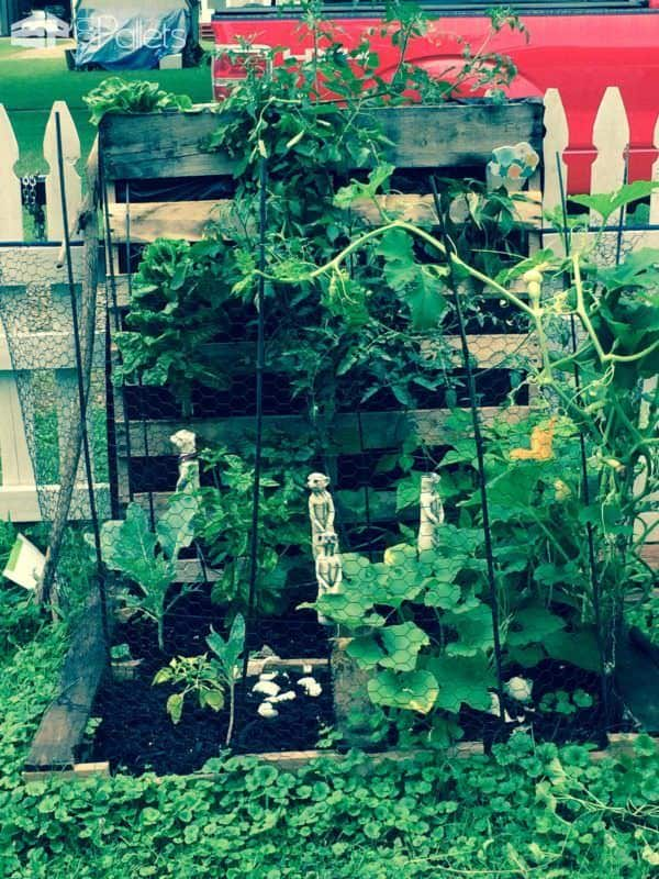 How To Make Your First Pallet Garden Pallet Planters & Compost Bins