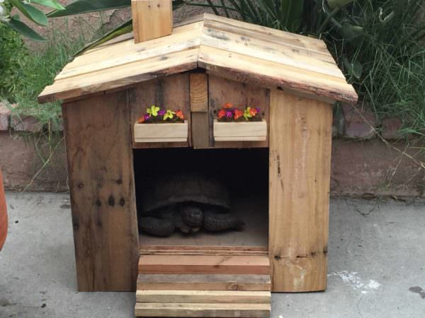 Tortoise House Amp Garden Side Table 1001 Pallets