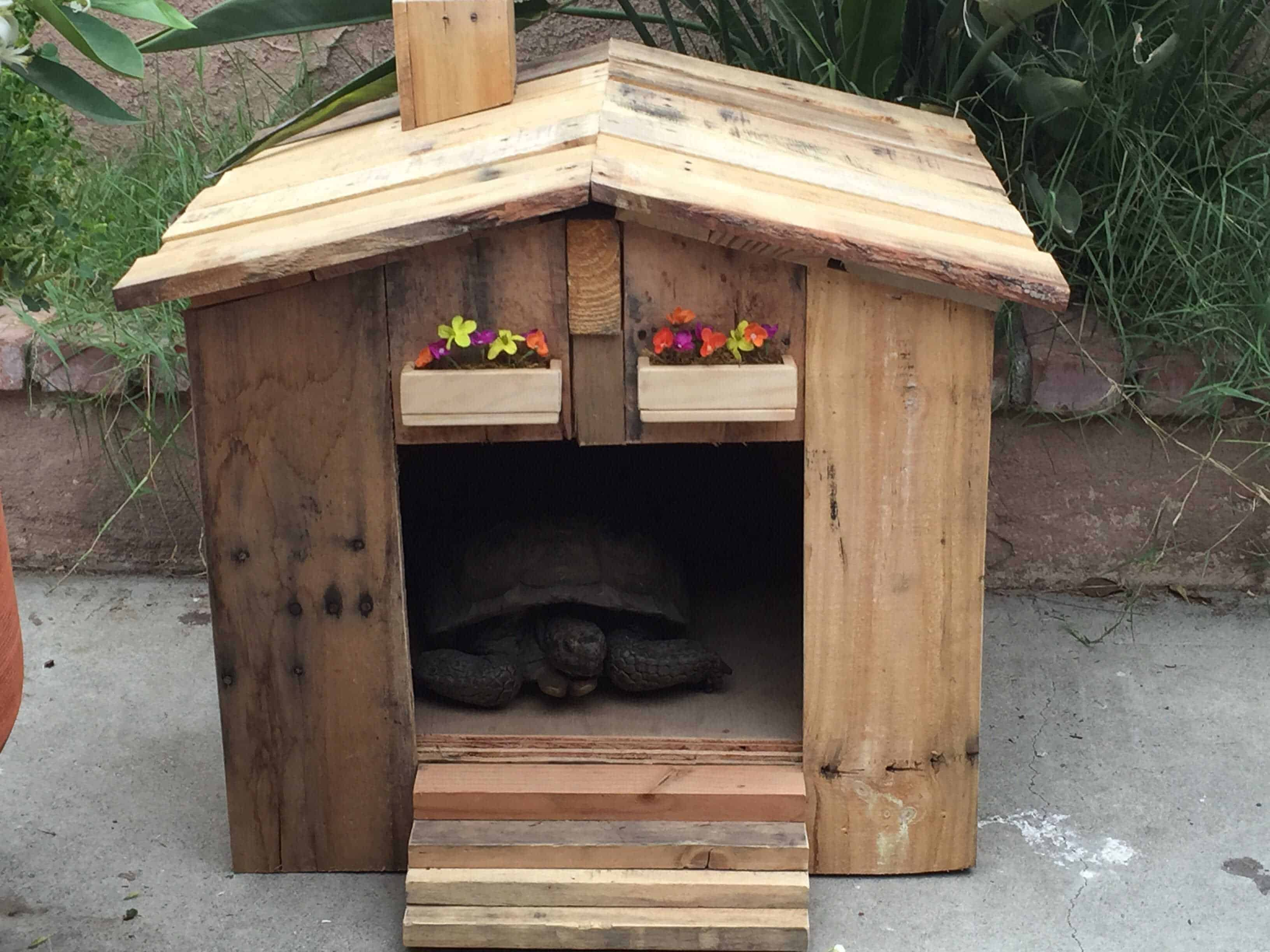 Tortoise House & Garden Side Table • Pallet Ideas • 1001 Pallets
