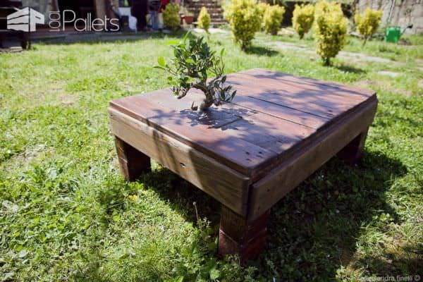 pallet-coffee-table-12