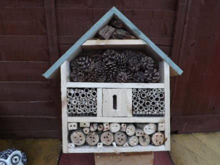 Pallet Bug House