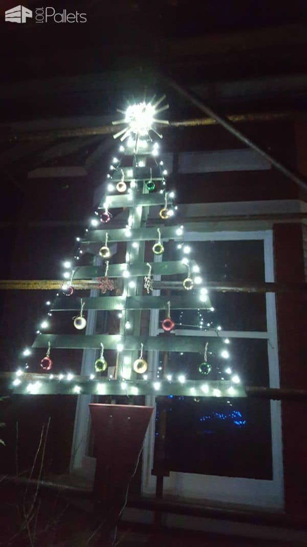 Real Christmas Tree Stands