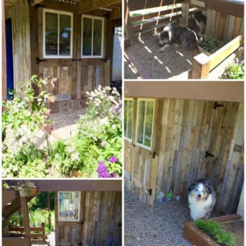 Potting Shed Makeover With Recycled Pallets