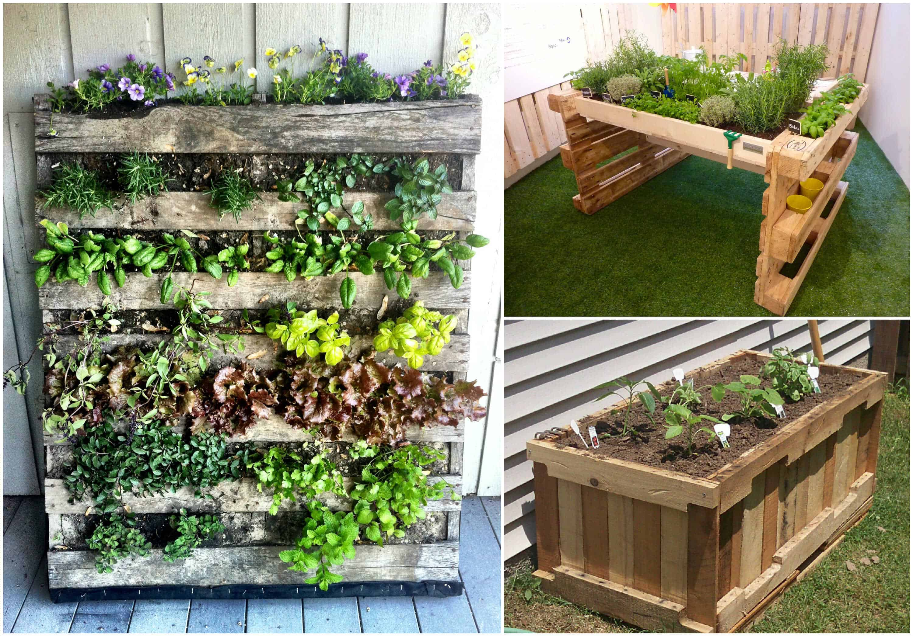 Reusing old pallets for garden projects 1001 pallets for Jardin vegetal exterieur
