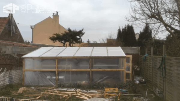 1001pallets.com-serre-greenhouse2