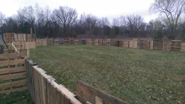 1001pallets.com-horse-pasture-and-shelter2