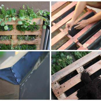 How to Make a DIY Pallet Garden