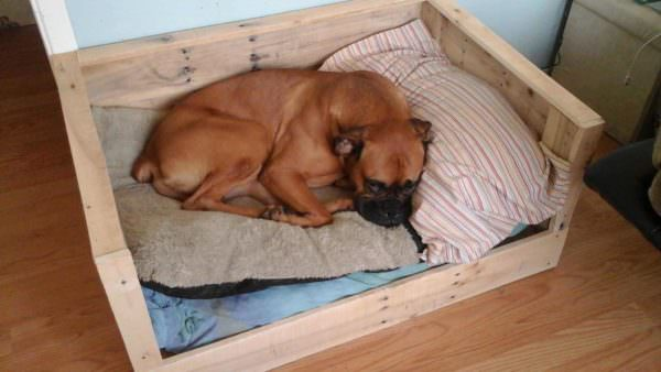 Pallet Dog Bed Animal Pallet Houses & Pallet Supplies