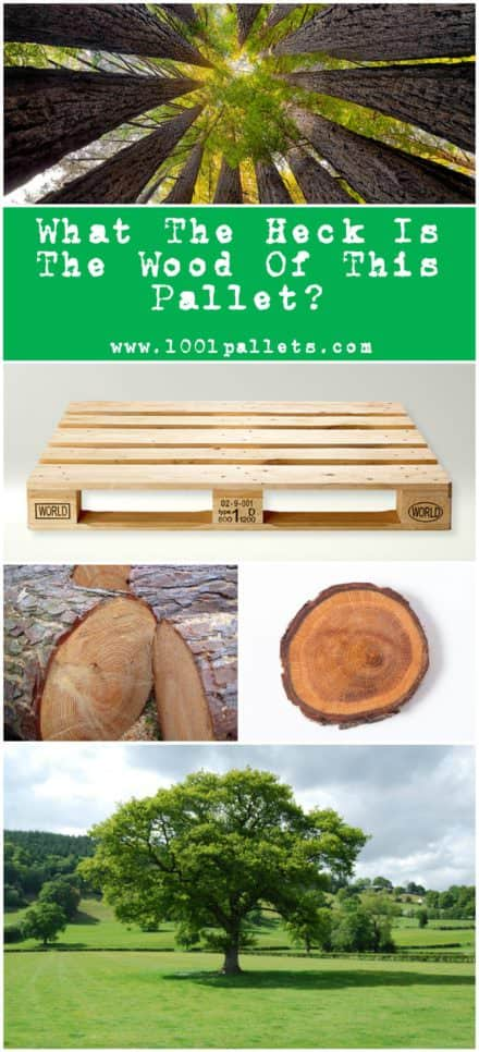 Learn How to Identify the Different Types of Pallet Wood!