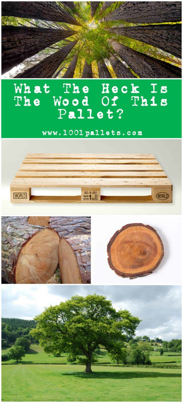 What The Heck Pallets Are Made Out Of?