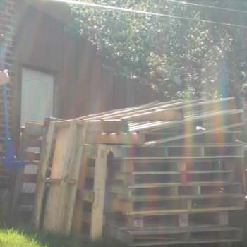Funny Video: The Pallet Revelation