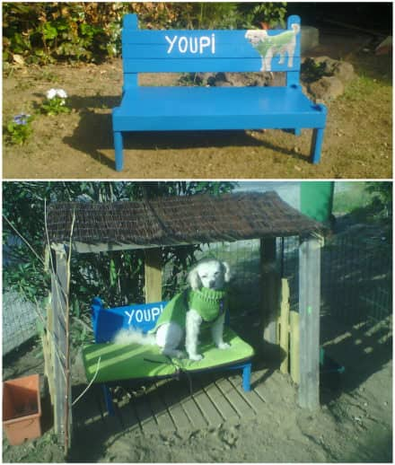 Pallet Dog Bench and Shelter