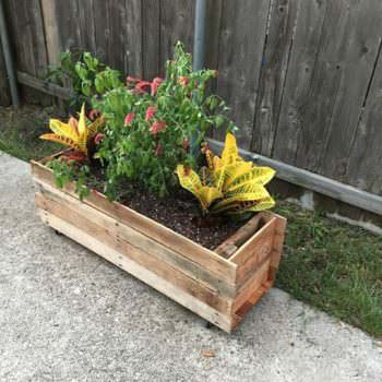Rolling Pallet Planter