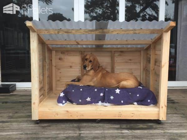 1001pallets.com-a-new-dog-kennel-because-she-grew-out-of-the-last-one3