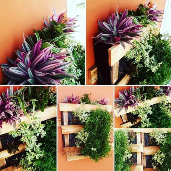 Pallet Vertical Planter 6