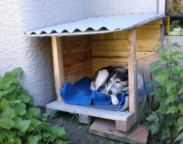 Snuggly Pallet Doghouse Lounger Animal Pallet Houses & Pallet Supplies