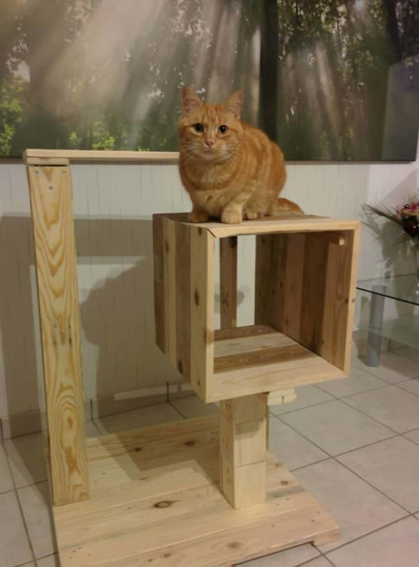 Petite Pallet Cat Tree / Arbre à Chat Animal Pallet Houses & Pallet Supplies