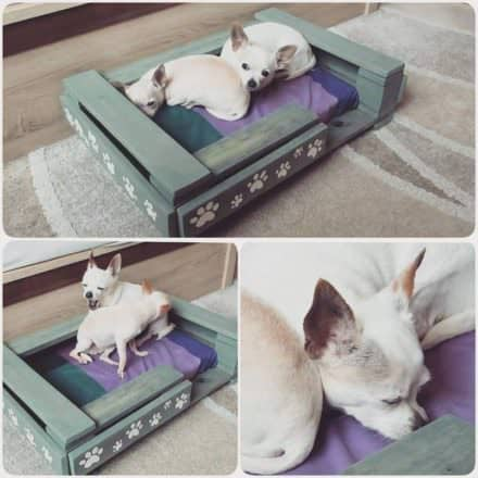 How You Can Create Cute Pet Beds Using Pallets