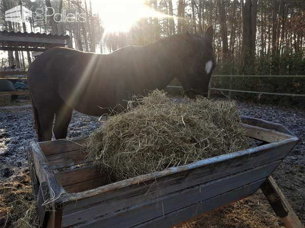 Pallet Hay Bins – Horses Love Using Them Animal Pallet Houses & Pallet Supplies