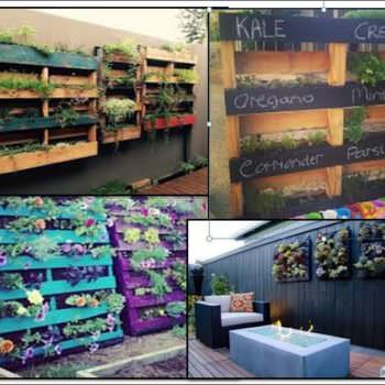 4 Easy Steps: Create Your Own Pallet Garden