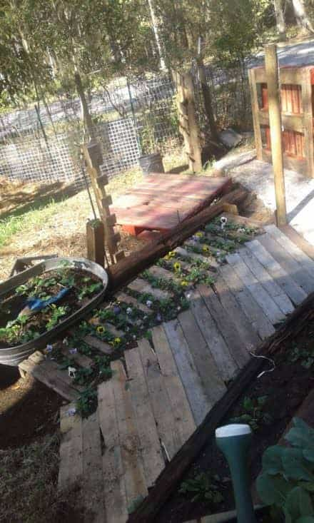 Budget Gardening Using Pallets Several Ways