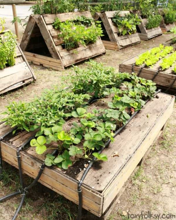 The most perfect raised garden beds made out of pallets for Pallet veggie garden