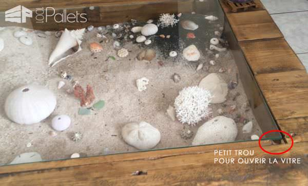 Beachy-keen Pallet Coffee Display Table / Table Basse Avec Vitrine D'exposition