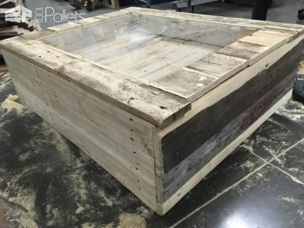 Beachy keen pallet coffee display table table basse avec for Table basse vitrine