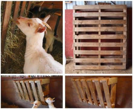 Easy Pallet Hay Feeder