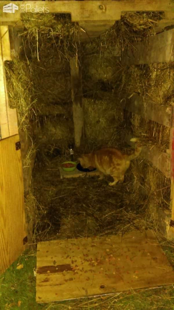 Pallet Cat Barn Keeps Kitty Purrfectly Warm! Animal Pallet Houses & Pallet Supplies