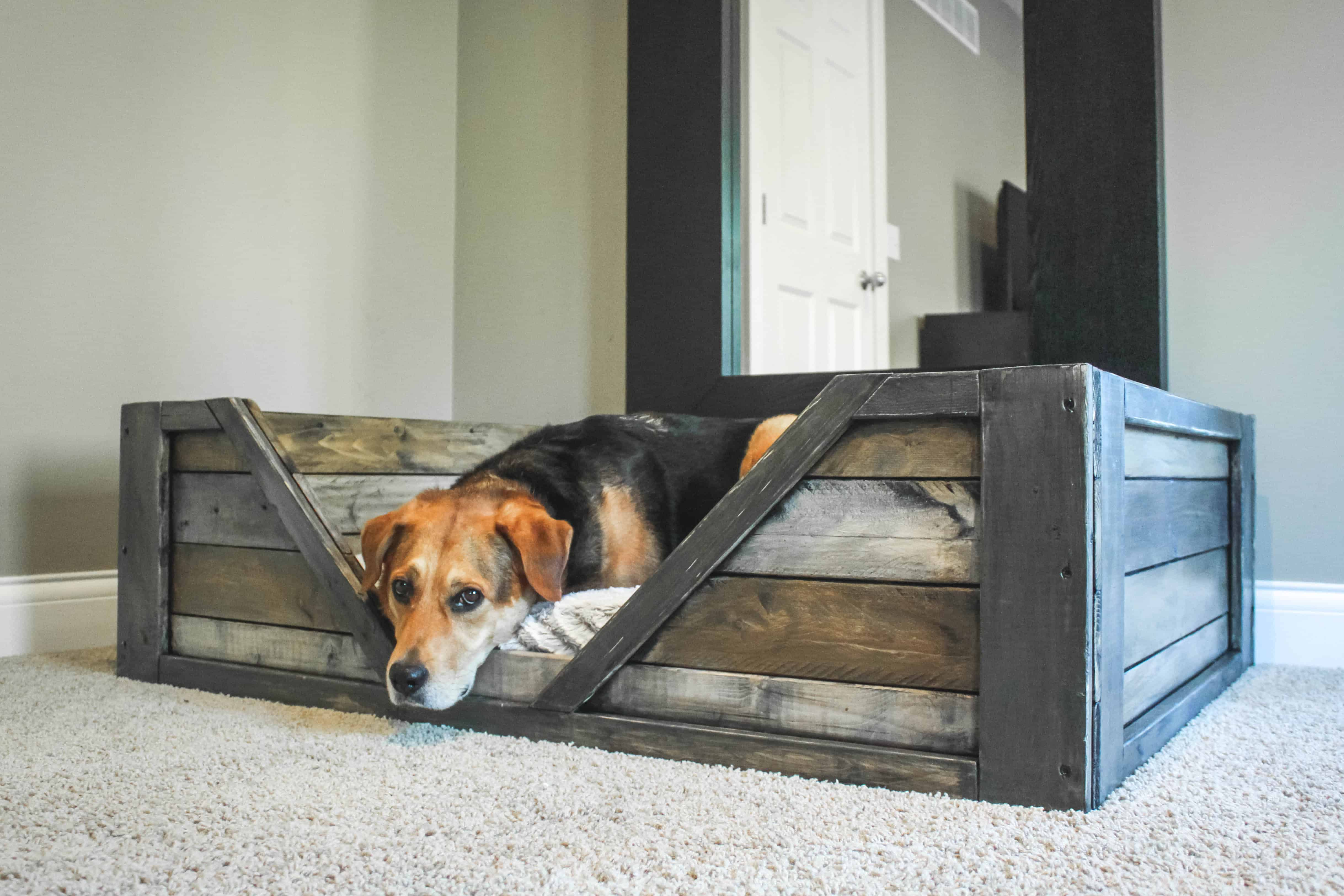 Diy Dog Bed Diy Pdf Tutorial Pallet Dog Bed O 1001 Pallets O Free Download
