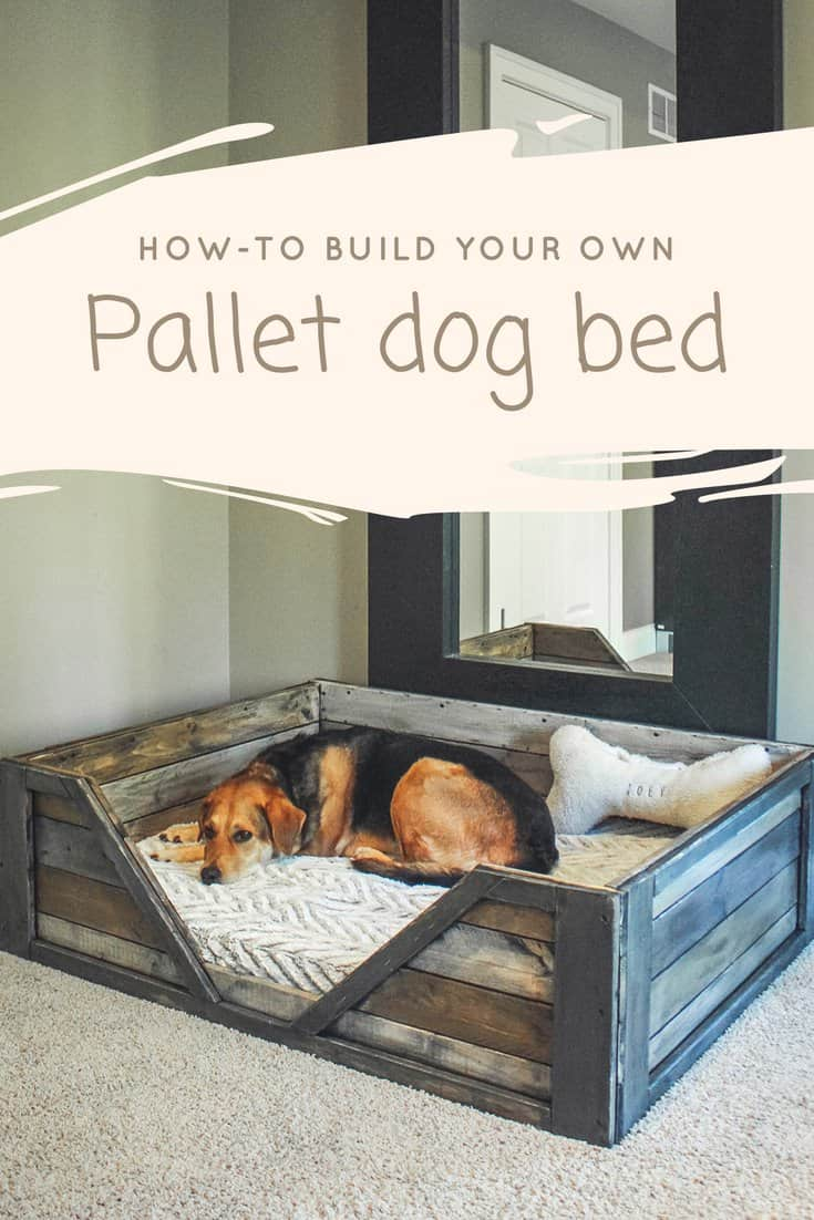 suitcase can it style a dog diy like how however makes make you from to bed the best