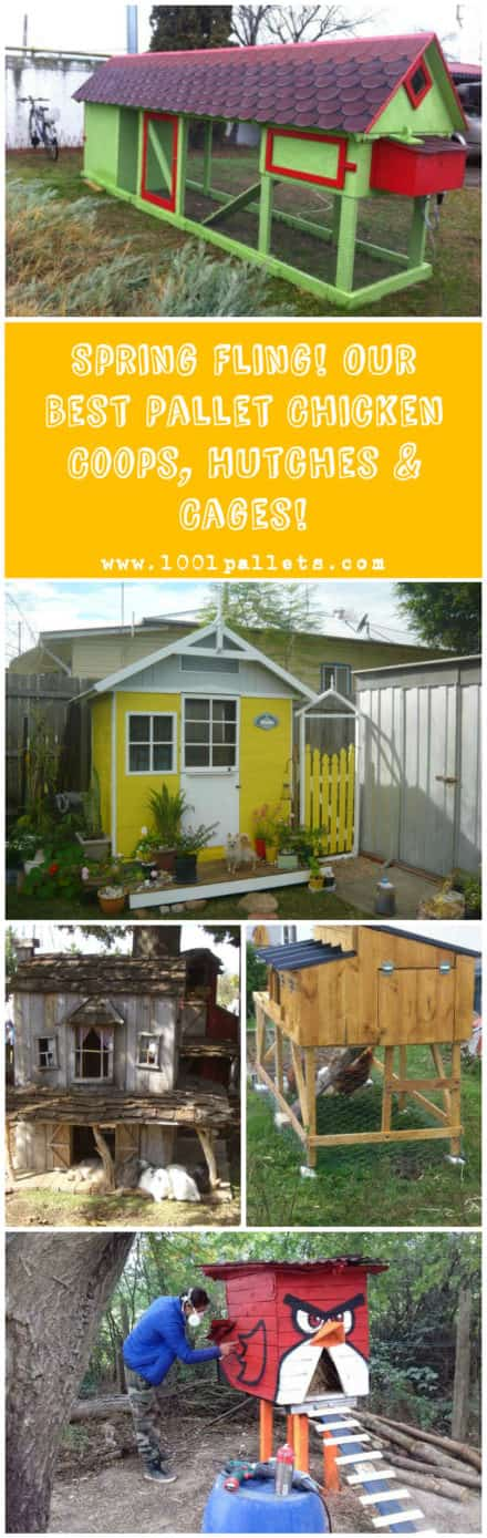 Spring Fling! Our Best Pallet Chicken Coops, Hutches & Cages!