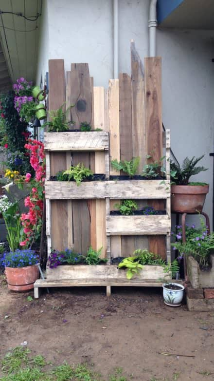 Ornamental Pallet Vertical Shade Garden