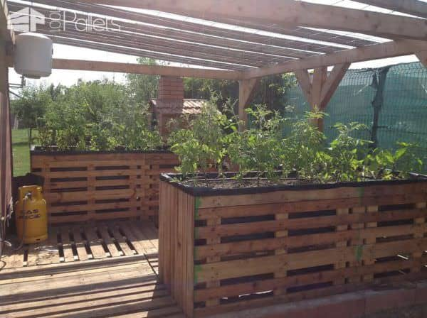 Over 40 Pallet Gardening Ideas for Spring