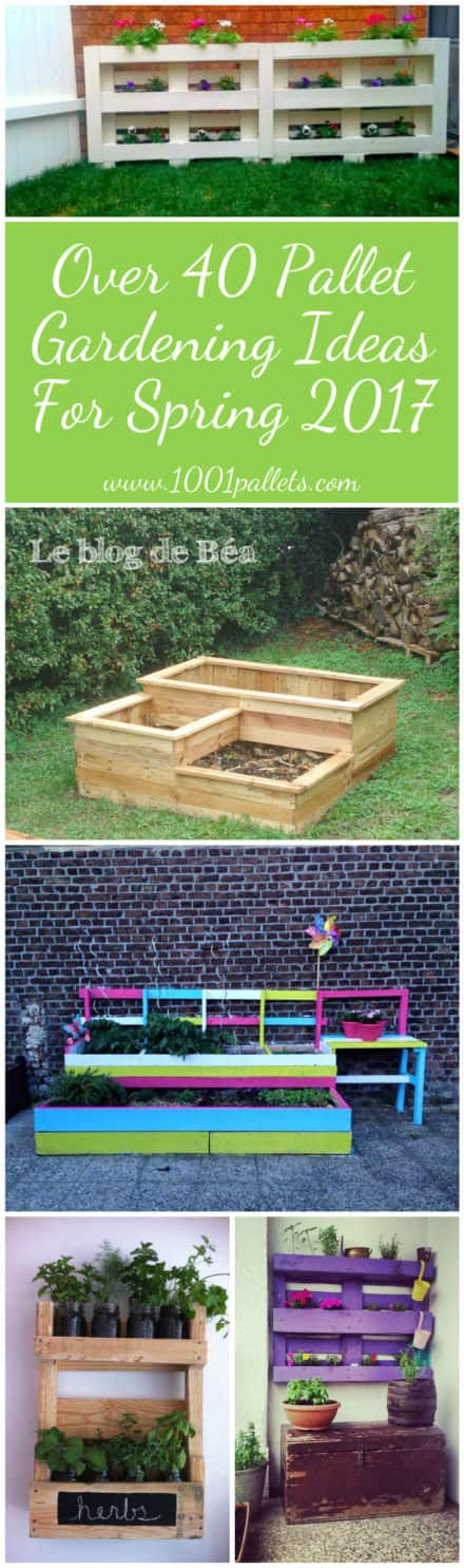 Over 40 Pallet Gardening Ideas for Spring 2017