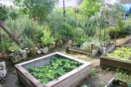 Raised Pallet Garden Beds / Carré Potager