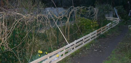 Pallet Garden Border Fence / Barrierre De Protection