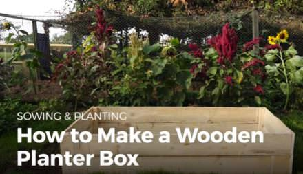 Make Pallet Wood Planter Boxes