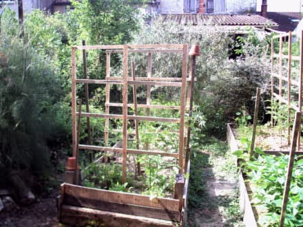 Pallet Trellis Accessorizes Raised Garden Beds