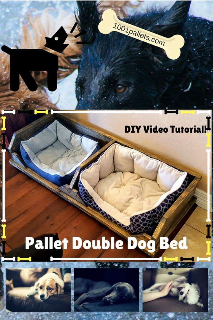 Diy Video Tutorial Pallet Two Dog Bed 1001 Pallets
