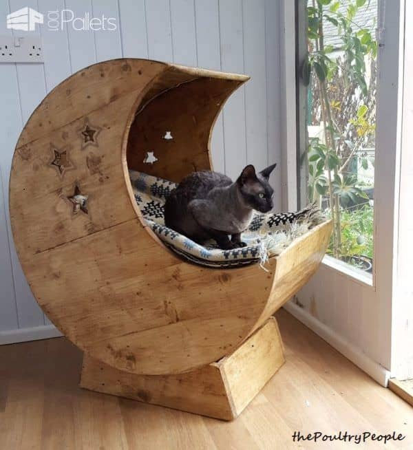 Cat Pallet Projects like this LED-lit Kitty Cradle proves that cat beds don't have to be ugly.