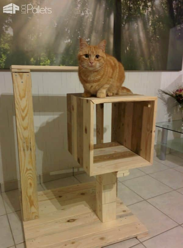 Cat Pallet Projects include this petite cat tree all from pallet wood.