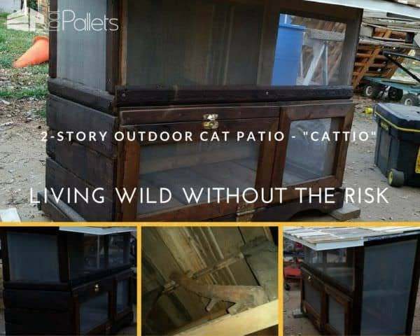 Build an outdoor cat patio to keep your kitties safe from cars and coyotes. Another great example of Cat Pallet Projects.