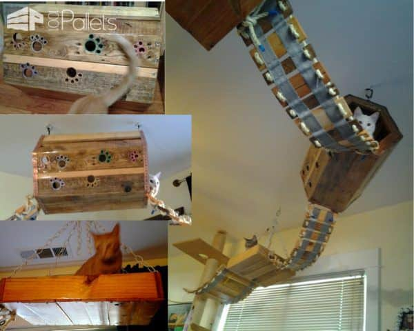 Go big or go home with this example of our Cat Pallet Projects. This is a 10' tall cat tree with multiple bridges, tunnels, and hanging baskets to make the cats feel like the lords of their world.