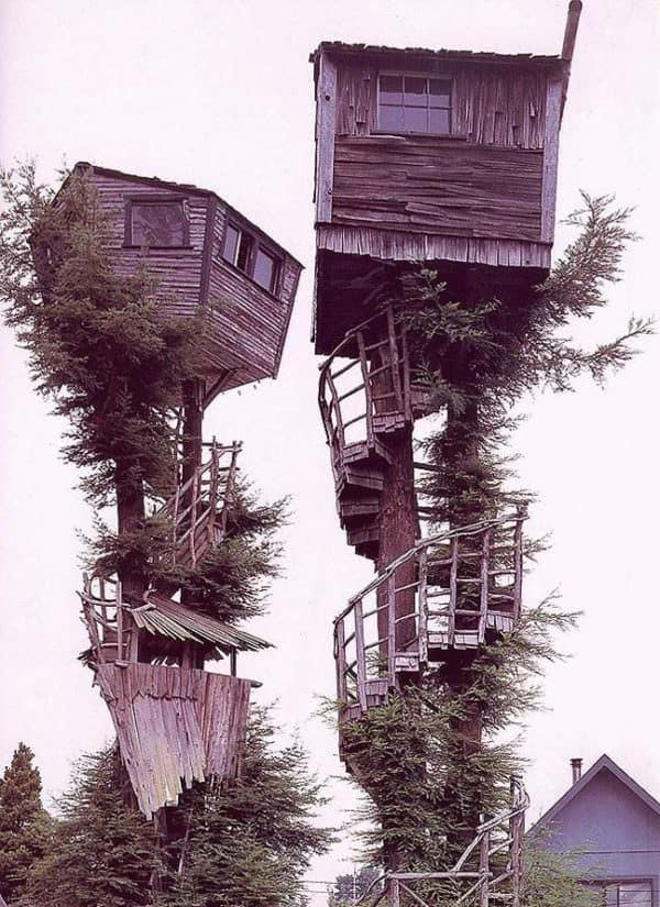 Nothing weirder than two tall treehouses. Weird Wood skills = unlocked!