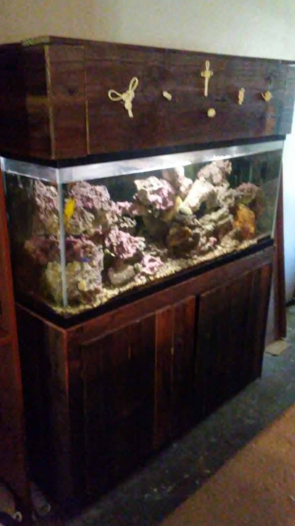 Pallet Fish Tank Stand Has Decorative Knot Hood Animal Pallet Houses & Pallet Supplies