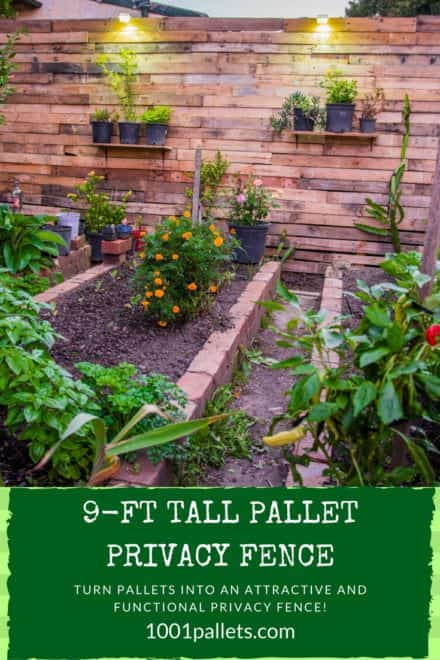pallet privacy fence creates stylish garden area - Garden Ideas With Pallets